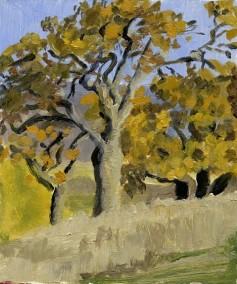 oak tree, Plein Air Oil Painting by Sarah F Burns