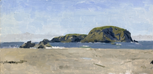 Whaleshead, Brookings, Oregon Oil Painting by Sarah F Burns