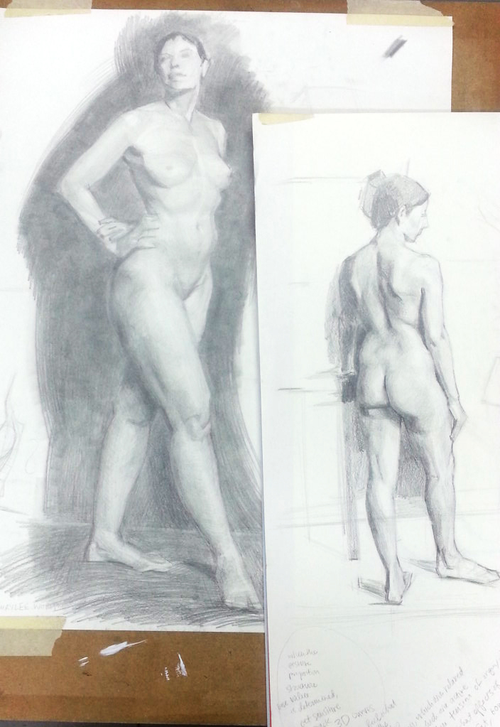 drawings from gross anatomy workshop