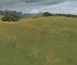 Clifford Beach Grassland