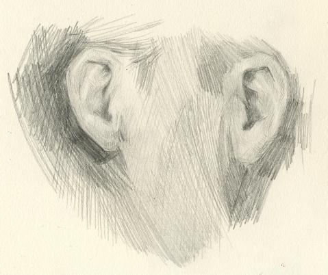 right ear left ear