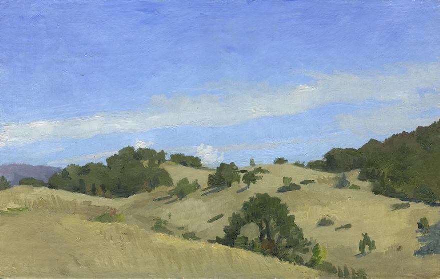 Sunny Day Roseburg Hills web