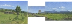Ditch Trail Panorama