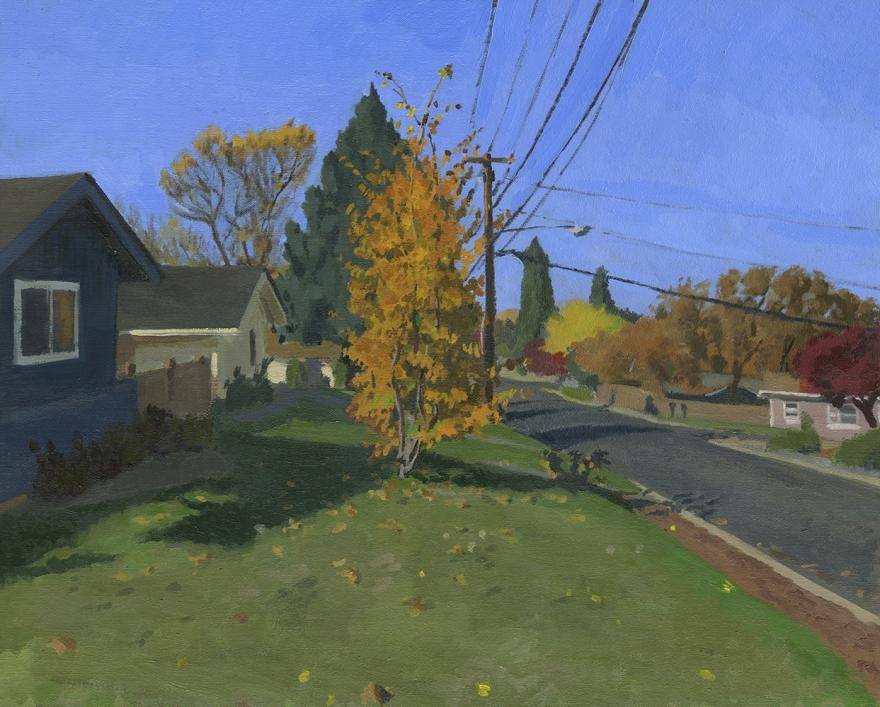 My House and Neighborhood